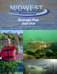 2020 – 2025 Strategic Plan released